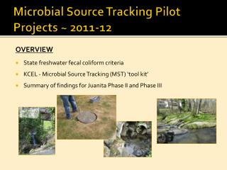 Microbial Source Tracking Pilot Projects ~ 2011-12
