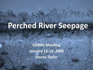 Perched River Seepage