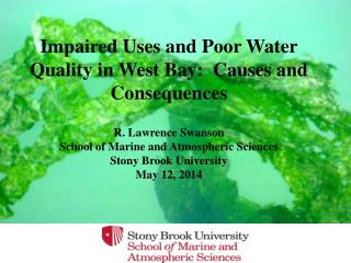 Impaired Uses and Poor Water Quality in West Bay:  Causes and Consequences R. Lawrence Swanson