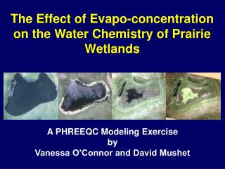 The Effect of  Evapo -concentration  on the Water Chemistry of Prairie Wetlands