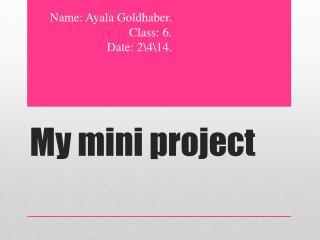My mini project
