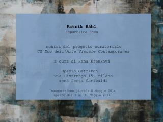 Patrik Hábl                       Repubblica Ceca mostra del progetto curatoriale