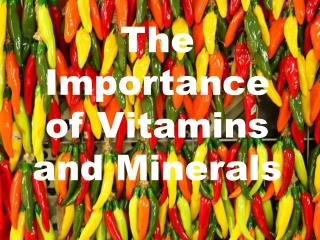The Importance of Vitamins and Minerals