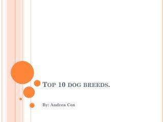 Top 10 dog breeds.