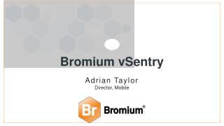 Bromium vSentry