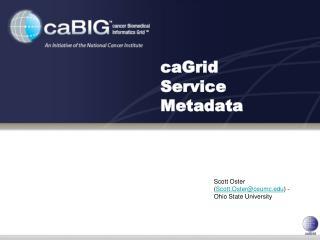 caGrid Service Metadata