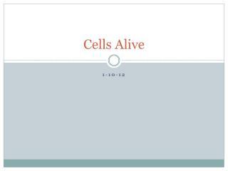 Cells Alive