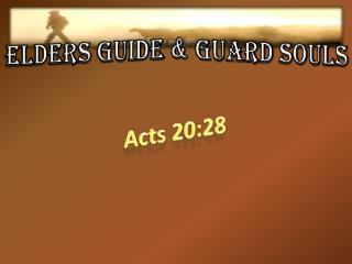 ELDERS GUIDE & GUARD SOULS