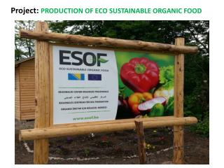 Project:  PRODUCTION OF  ECO SUSTAINABLE ORGANIC FOOD