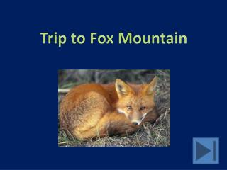 Trip to Fox Mountain