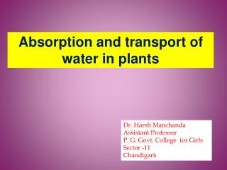 Absorption and transport of                         water in plants