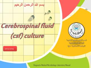 Cerebrospinal fluid  ( csf) culture