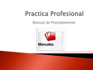 Practica Profesional