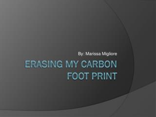 Erasing My Carbon Foot Print