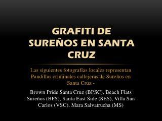 GRAFITI DE  SURE�OS EN SANTA CRUZ