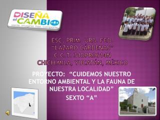 "ESC. PRIM. URB. FED. ""LÁZARO CÁRDENAS"" C.C.T. 31DPR0614N CHICHIMILA, YUCATÁN, México"