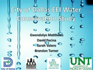 City of Dallas EEI Water Conservation Study