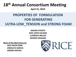 18 th  Annual Consortium Meeting April 21, 2014 MAURA PUERTO JOSE LOPEZ SALINAS