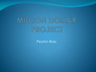 MILLION DOLLAR PROJECT