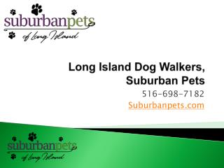 Long Island Dog Walkers, Suburban Pets