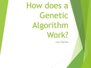 How does a Genetic Algorithm Work?