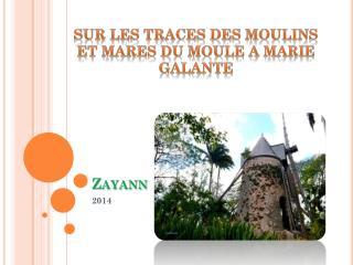 Zayann