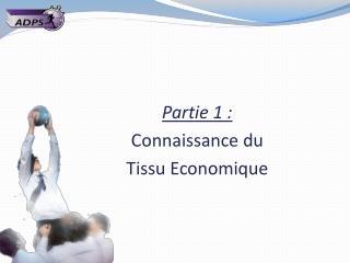 Partie 1 : Connaissance du  Tissu Economique
