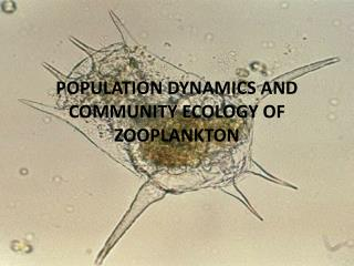 POPULATION DYNAMICS AND COMMUNITY ECOLOGY OF ZOOPLANKTON