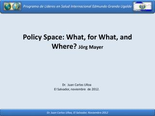 Policy Space: What, for What, and Where? Jörg  Mayer