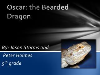 Oscar: the Bearded Dragon