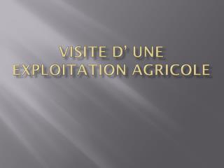 VISITE D' UNE EXPLOITATION AGRICOLE