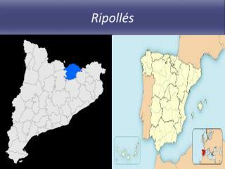 Ripoll�s
