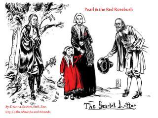 Pearl & the Red Rosebush