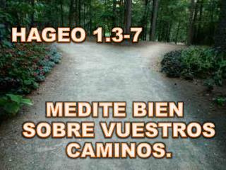 HAGEO 1.3-7 MEDITE BIEN SOBRE VUESTROS CAMINOS.
