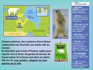 Chaque automne, des centaines d�ours blancs s�approchent de Churchill, une petite ville du Canada.