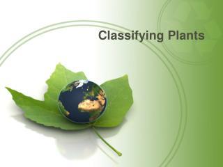 Classifying Plants