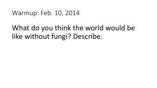 Warmup : Feb. 10, 2014