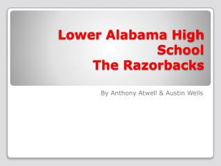 Lower Alabama High School The Razorbacks