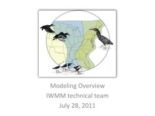 Modeling Overview IWMM technical team July 28, 2011