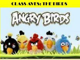 CLASS AVES: THE BIRDS