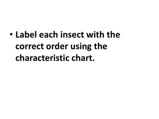 Label each insect with the correct order using the characteristic chart.
