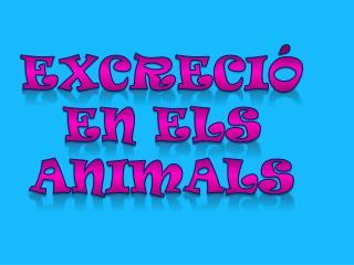 Excreci�  en els  animals