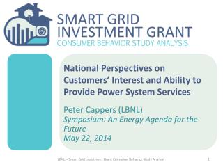 National Perspectives on Customers' Interest and Ability to Provide Power System Services