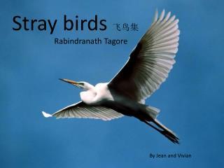 Stray  birds  飞鸟集