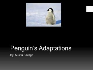 P enguin's Adaptations