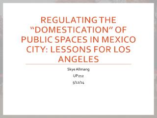 "Regulating the ""Domestication"" of Public Spaces in Mexico City: Lessons for Los Angeles"