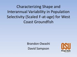 Brandon  Owashi David Sampson