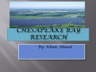 Ches apeake Bay Research