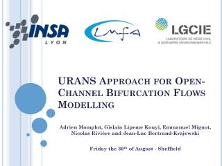 URANS Approach  for  Open-Channel Bifurcation Flows Modelling