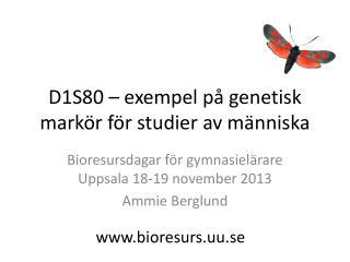 D1S80 – exempel på genetisk markör för studier av människa